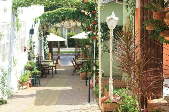 bistro vila rica bh pet friendly bendize arreda